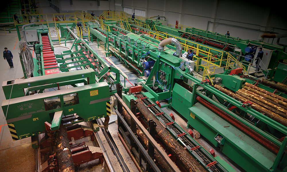 Sawing line in Belarus - One operator sawing line