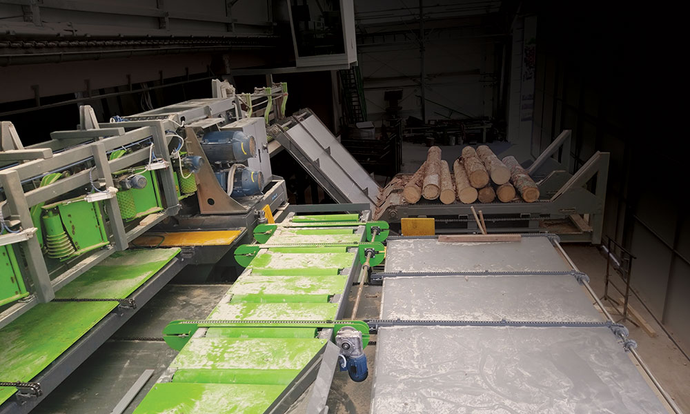 Sawing line in Slovenia - SDH Sawing line